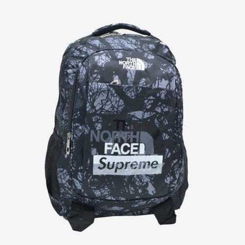 supreme north face рюкзак
